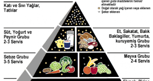 Protein Enerji Malnütrisyonu