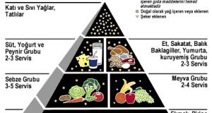 Protein Enerji Malnütrisyonu (PEM)