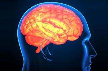 Beyin Apsesi Belirtisi