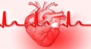 Kalp Yetmezliği (Erişkin)